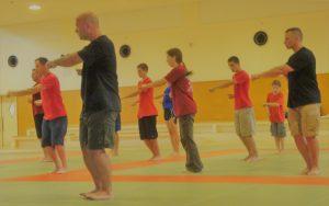 Ryukyu Kempo Japanese martial arts