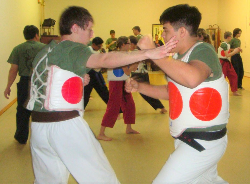 karate partner drills with turtle shells