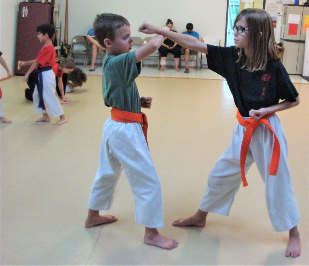 karate partner complex