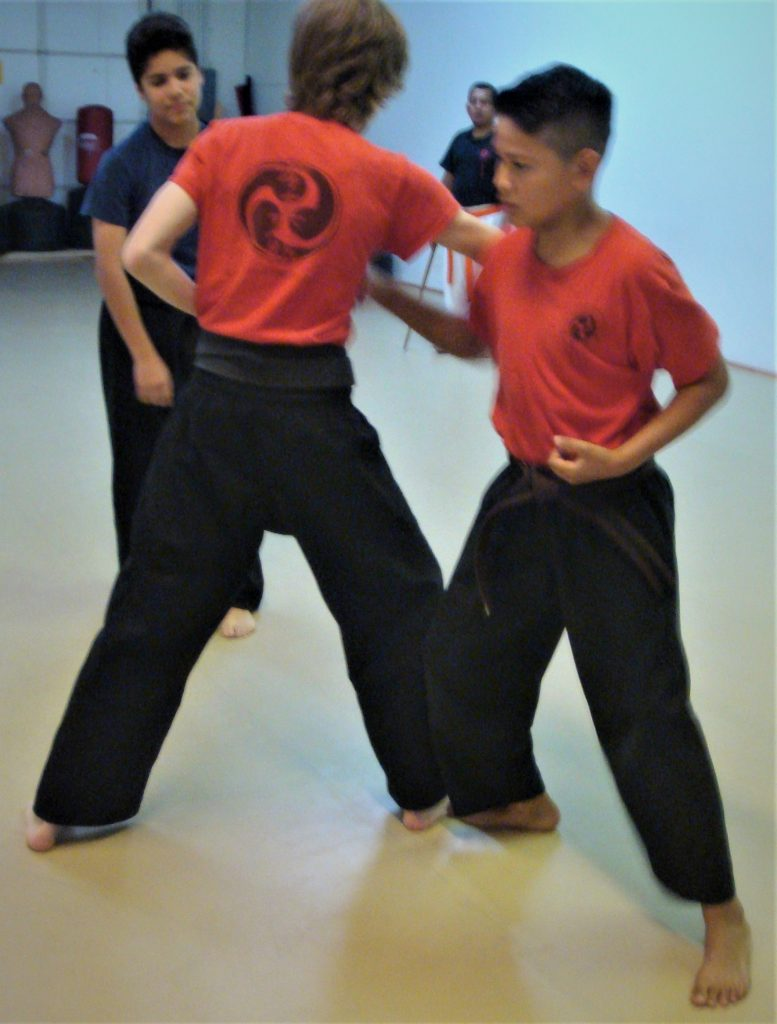partner drill with karate sweep