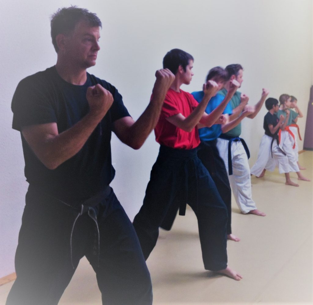 coring is one of Ryukyu Kempo's core principles