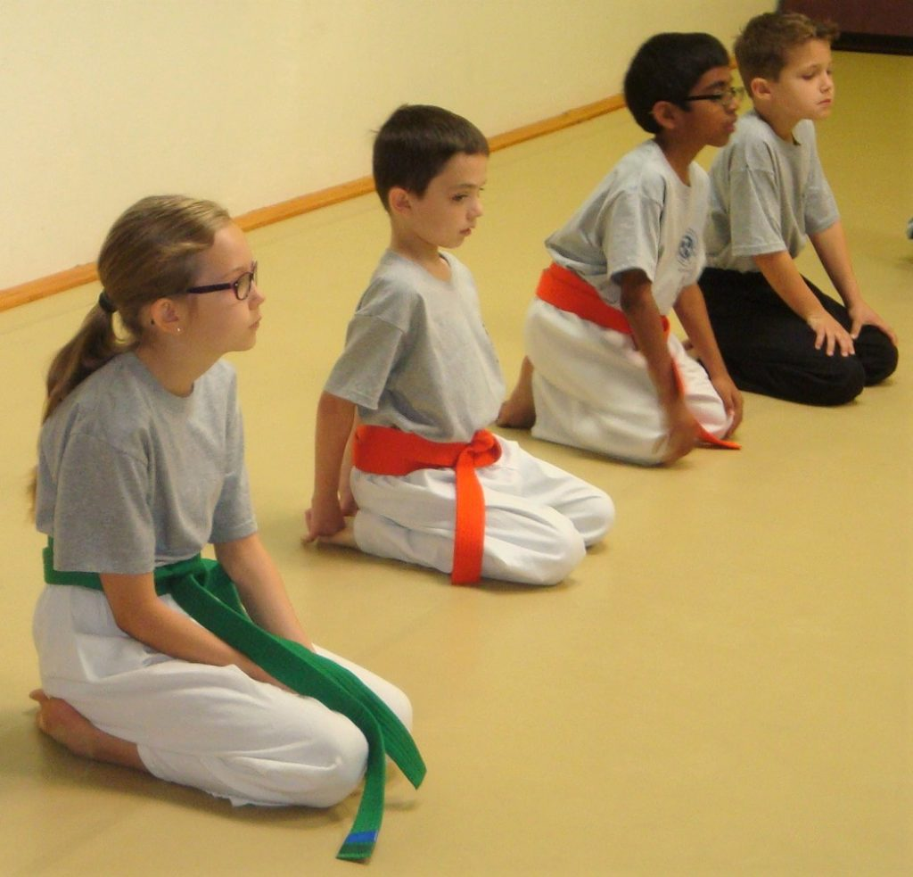 Parents want karate to reinforce discipline