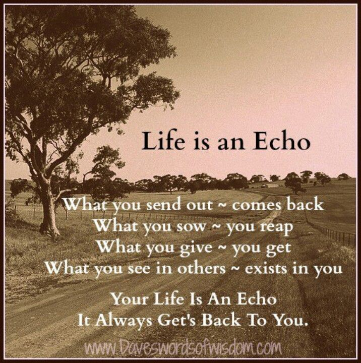 Life is an echo words of wisdom such as what you sow, you reap are some of the secret teachings of karate