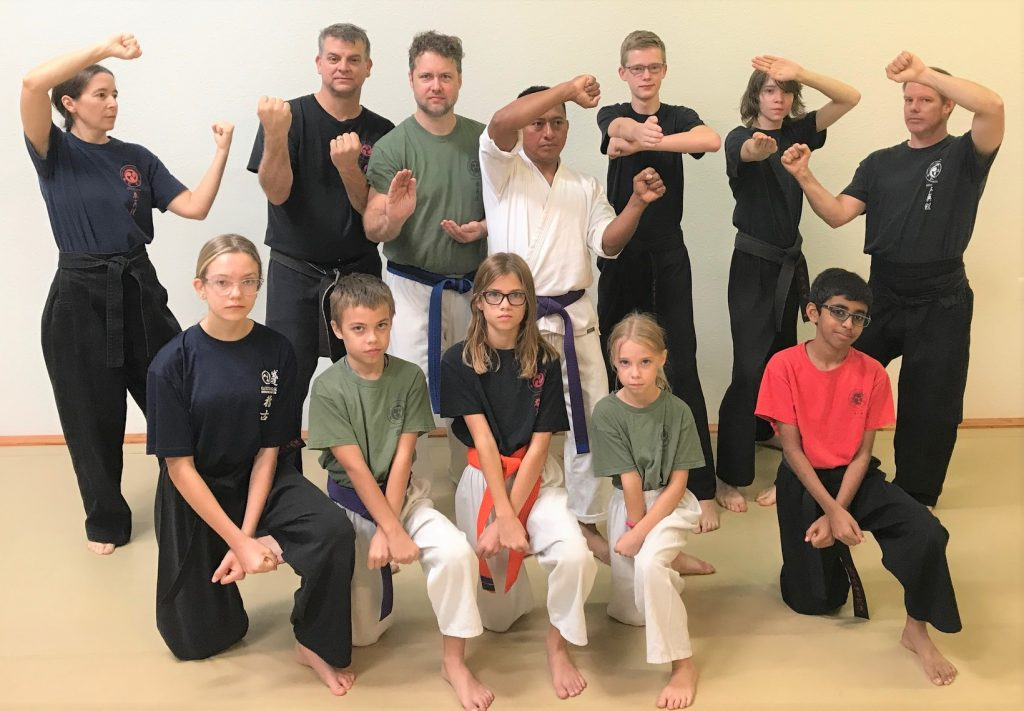 awesome karate instructors and awesome karate students in their karate poses