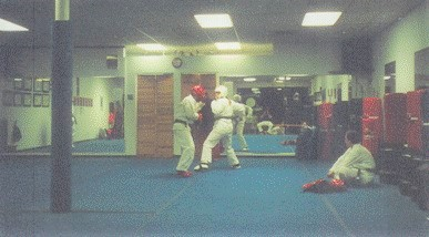 sparring activities are one way that karate teaches fitness