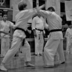 applying traditional Okinawan karate skills